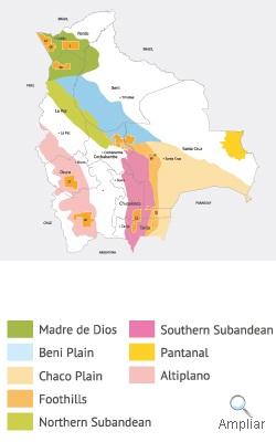 CUENCAS PETROLIFERAS EN BOLIVIA